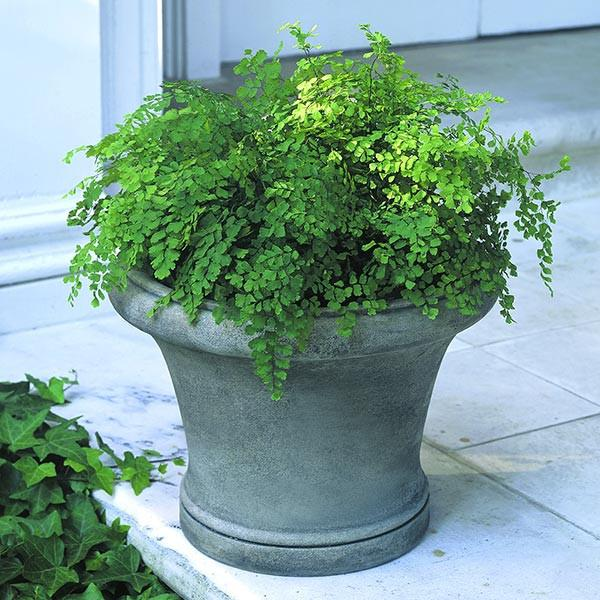 Campania International Cast Stone Westport Planter Urn/Planter Campania International
