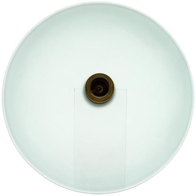 Polaris P206 Frosted Glass Vessel Sink Vessel Sink Polaris