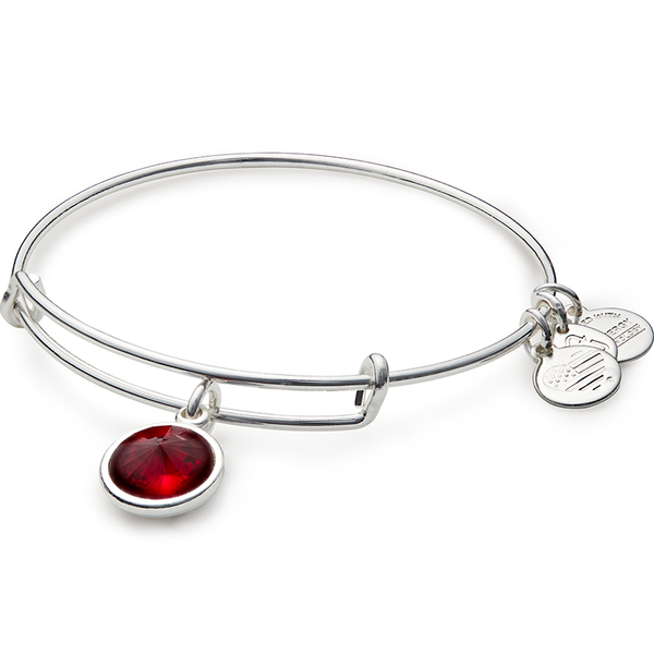 January Birth Month Charm Bangle