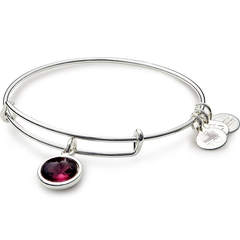 February Birth Month Charm Bangle