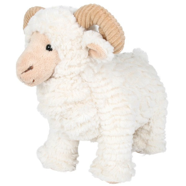 Melvin Merino Sheep