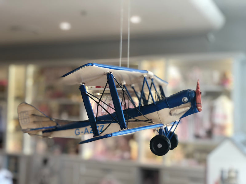 Tiger Moth Blue