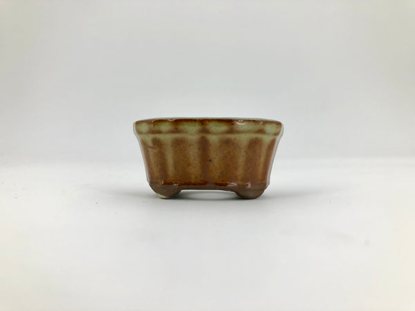 "Mini Mini Bonsai Pot in Scalloped Oval - 1 3/4""L x 3/4""H"