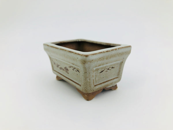 "Mini Bonsai Pot in Painted Rectangle - 3""L x 1 1/2""H"