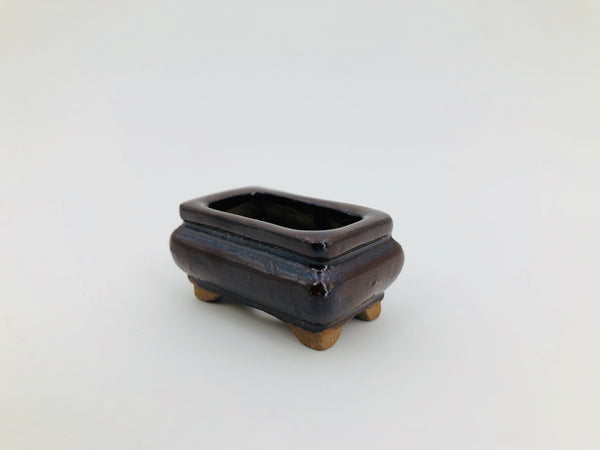 "Mini Mini Bonsai Pot in Ornate Rectangle - 1 3/4""L x 3/4""H"