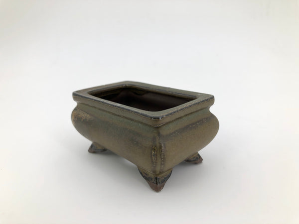 "Mini Bonsai Pot in Ornate Rectangle - 3""L x 1 1/2""H"