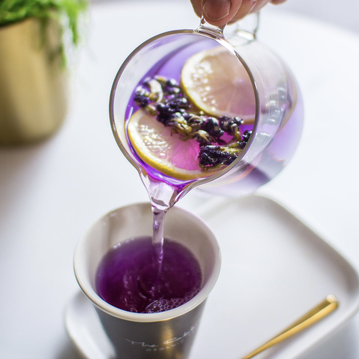 Vivid loose leaf colour changing tea by The Rabbit Hole - pouring from teapot into cup with lemon