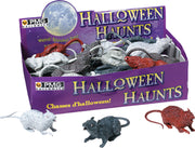 rats-assorted-display-box-of-24