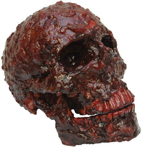 Blood Scab Resin Skull Prop
