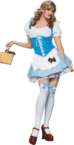 Women's Picnic Chick Costume