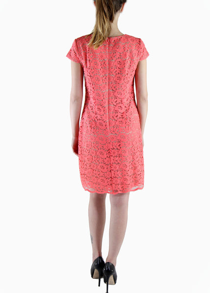 Ivy & Blu <br> Coral Lace Shift Dress