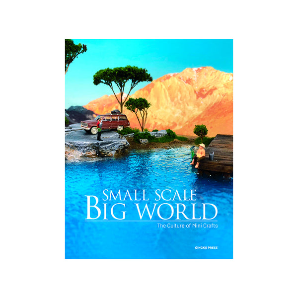 Small Scale Big World - Hardcover