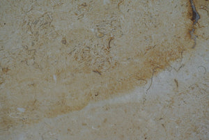 DESERT GOLD Limestone Brushed/Filled - Tile Series