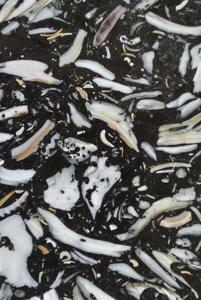 BLACK OYSTER Eco Slab - Slab Series