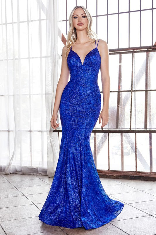 CB049 Prom Dress Royal