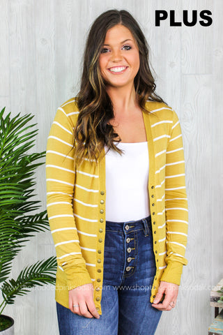 Brooke Striped Snap Cardigan Plus