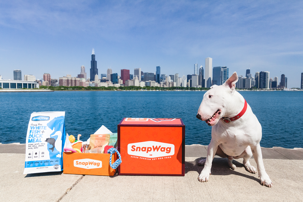 grain-free-dog-food-chicago-illinois
