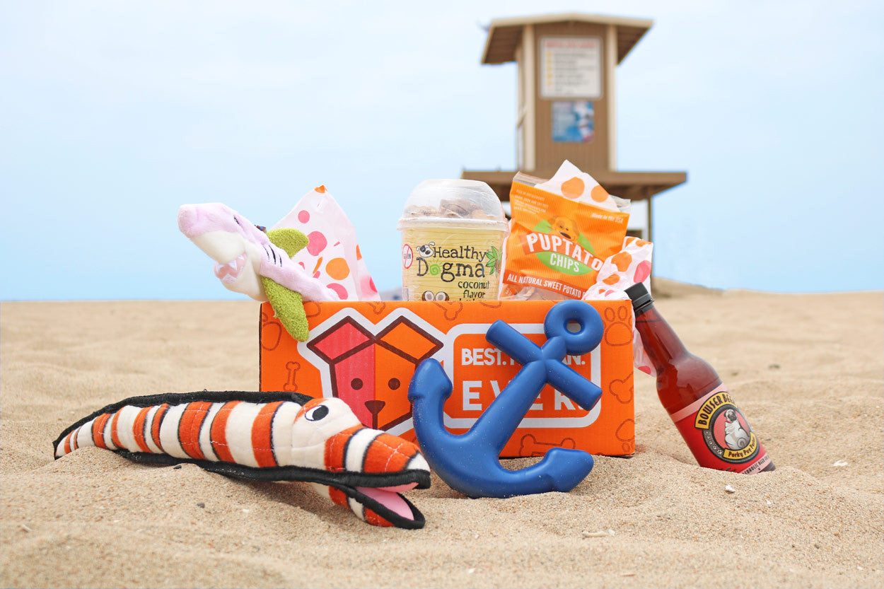 "Special Edition ""Life's a Beach"" SnapWag Box (Subscription)"