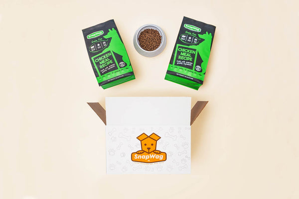 """The Foodie"" Holiday Dog Gift Box"