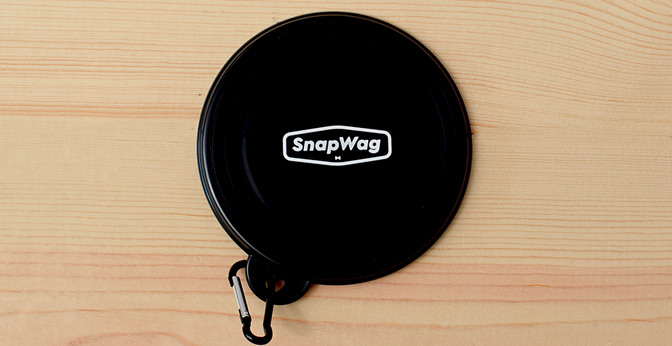 Collapsible Dog Bowl - Black