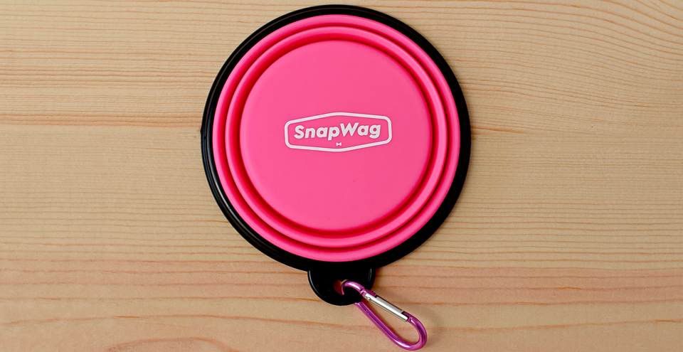 Collapsible Dog Bowl - Pink