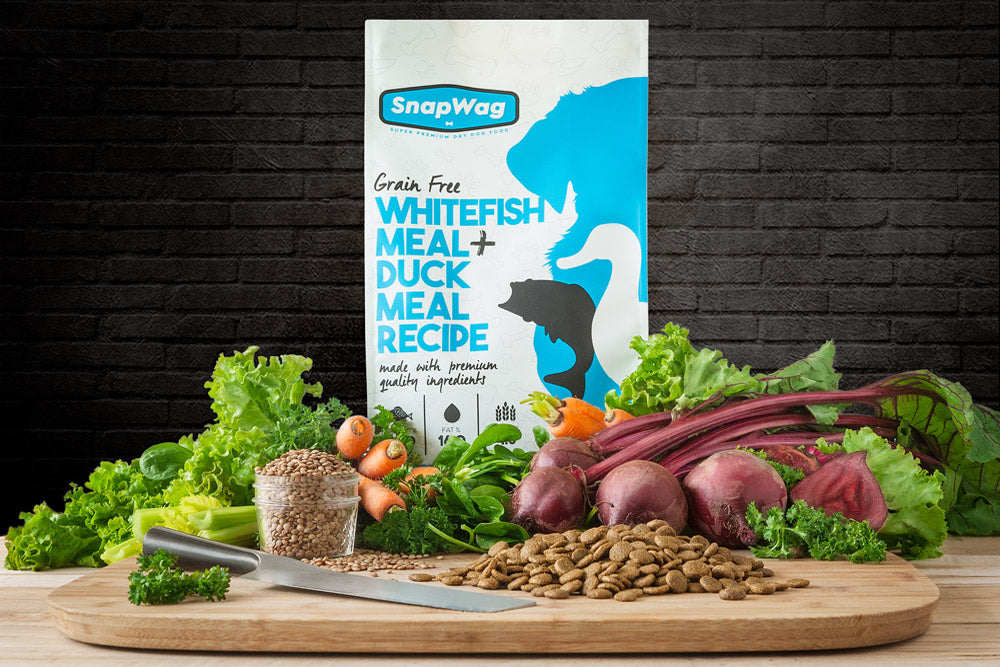 SnapWag Craft-Style Dog Food, Whitefish/Duck Meal Recipe