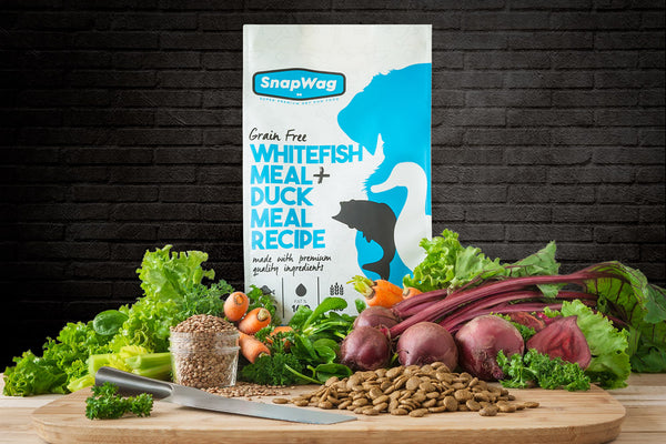 SnapWag Craft Dog Food Box, Grain-Free Whitefish & Duck Meal Recipe