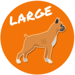 Large Size Dog Breed