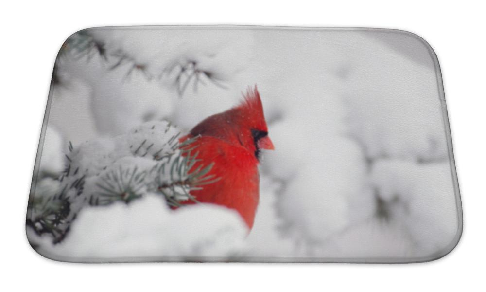 Bath Mat, Northern Cardinal Perched In A Tree