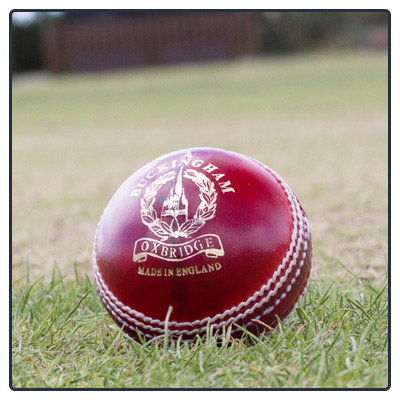 Junior/Colt Cricket Balls