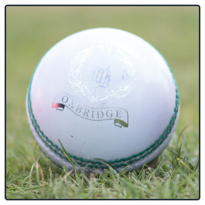 MAGNA MEN'S CRICKET BALL - Various Colours
