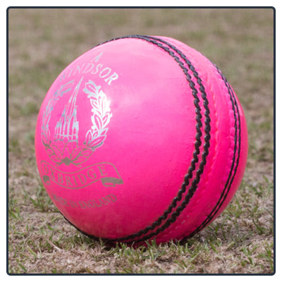 WINDSOR MEN'S CRICKET BALL - Pink or White