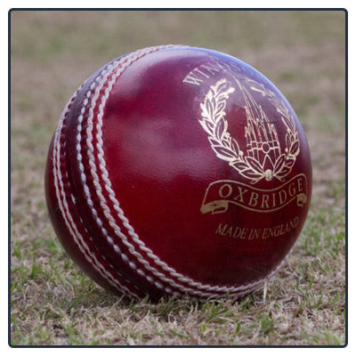 WINDSOR BUCS MEN'S CRICKET BALL - Red
