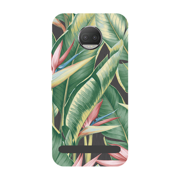 Leaf paint- Printed Hard Back Case Cover for Moto Z3 Play-Hamee India