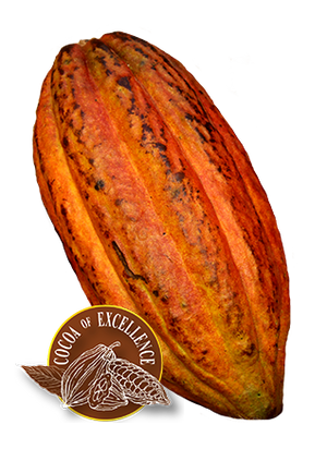 75% Dark Chocolate - Rugoso Cocoa Variety