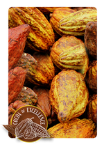 71% Dark Chocolate - Tenor Cocoa Bean Variety