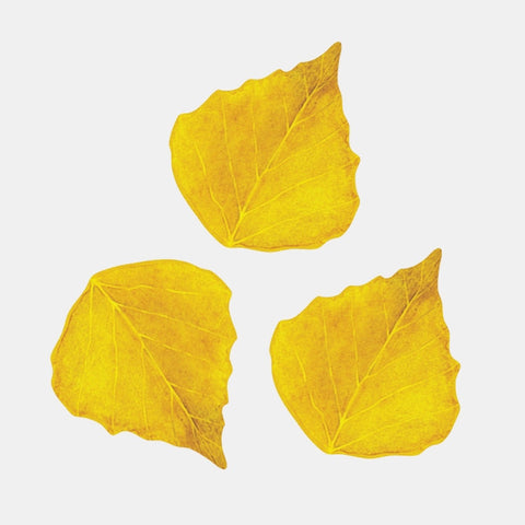 Autumn Leaves Wall Stickers