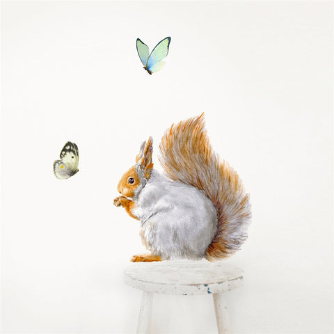 Grey Squirrel Wall Decal