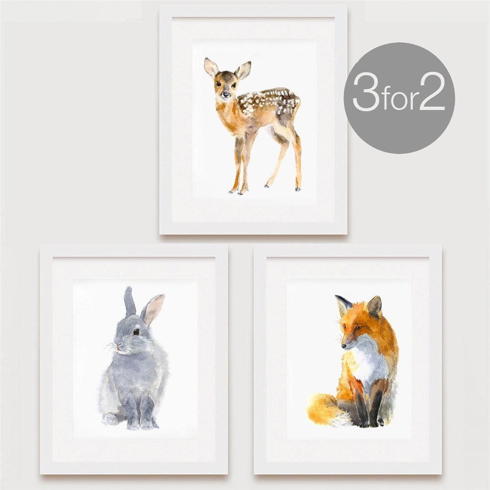 Woodland Animal Prints, 3 for 2