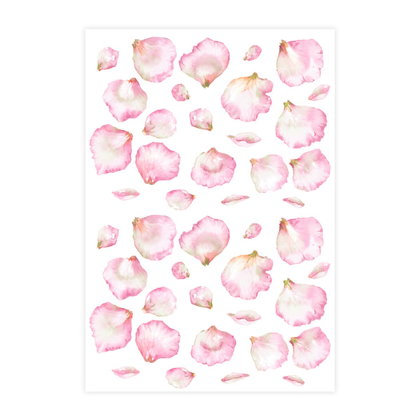 Watercolour Flower Petals Wall Stickers