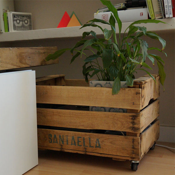 caja madera ruedas [product_collection] angelina purpurina