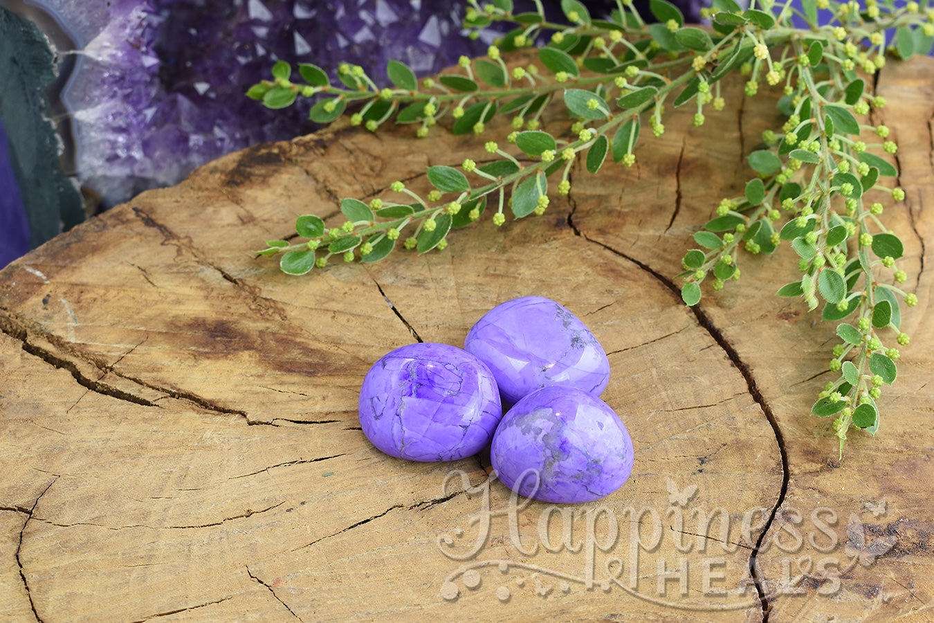 Purple Howlite (Tumbled)