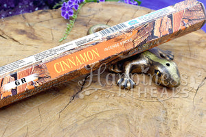 Cinnamon Incense Sticks - GR
