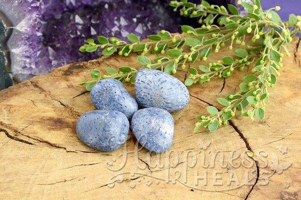 Blue Coral (Tumbled)