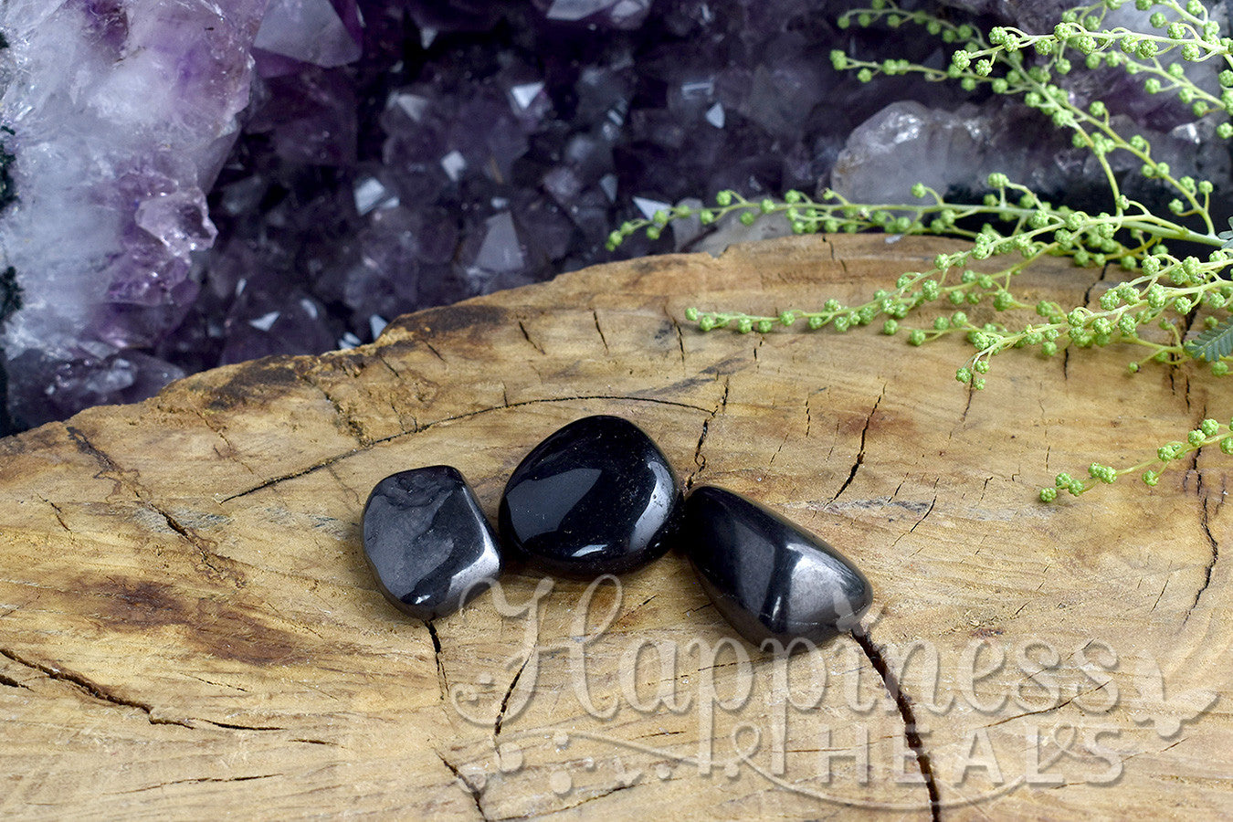 Shungite (Tumbled)