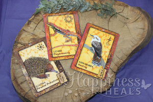 Animal Dreaming Oracle Cards