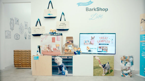 BarkShop Live pop-up shop | Shopify Retail blog
