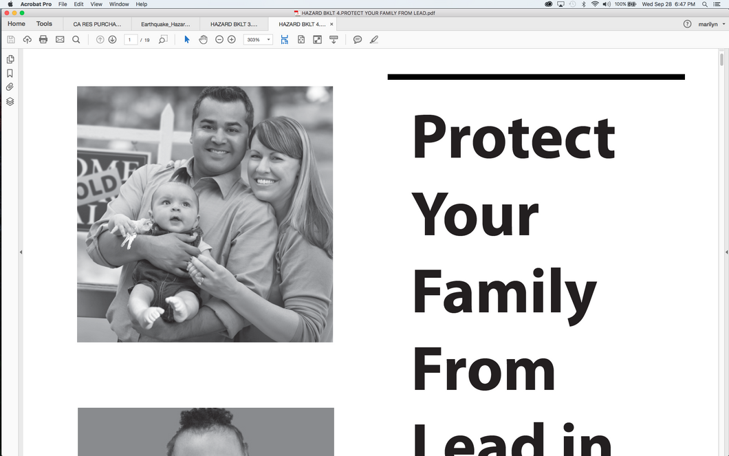 Hazards Booklet 4:  Protect your Family From Lead in your Home
