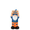 Florida Gators NCAA Slogan Sign Mini Gnome