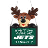 New York Jets NFL Reindeer With Sign Ornament - Version 2